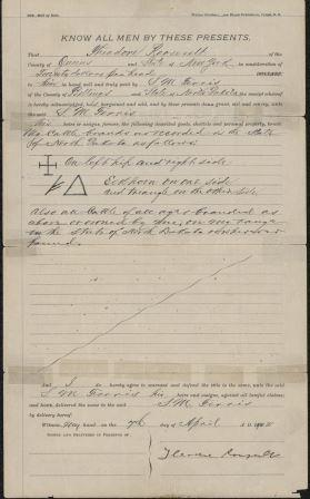Bill of sale between Theodore Roosevelt and Sylvane M. Ferris