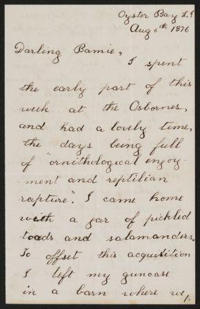 Letter from Theodore Roosevelt to Bamie, his sister